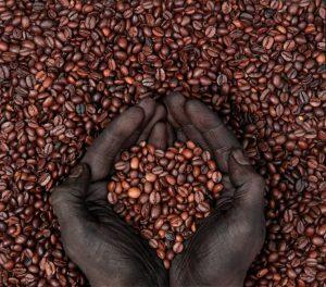 Колумбийский сортовой кофе. Поставка с США.